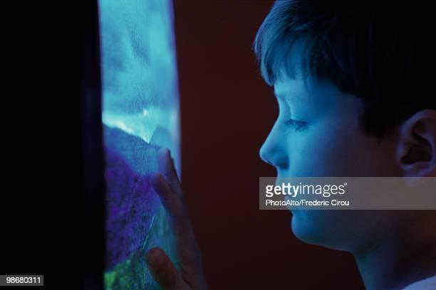 Boy watching TV, touching screen, profile