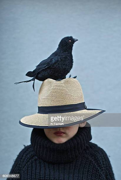 Boy with a crow on his head.