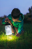 a boy with a lantern looking for a loss in the grass at night