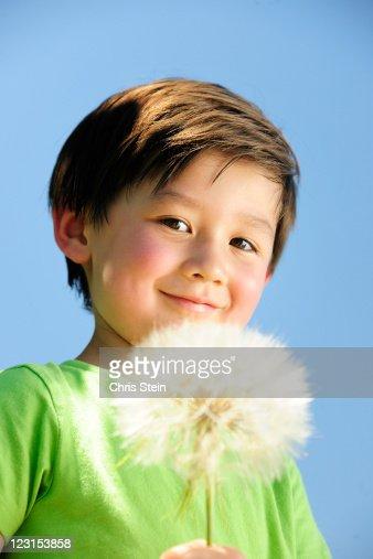 Boy with big dandelion : Stock Photo