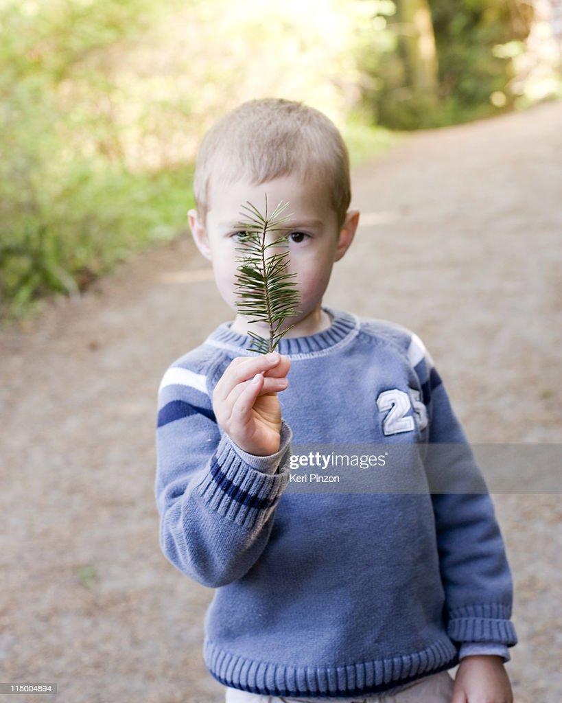 Boy with evergreen twig.