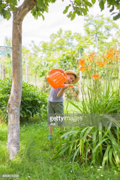 Boy with hat,  watering flowers in summer garden