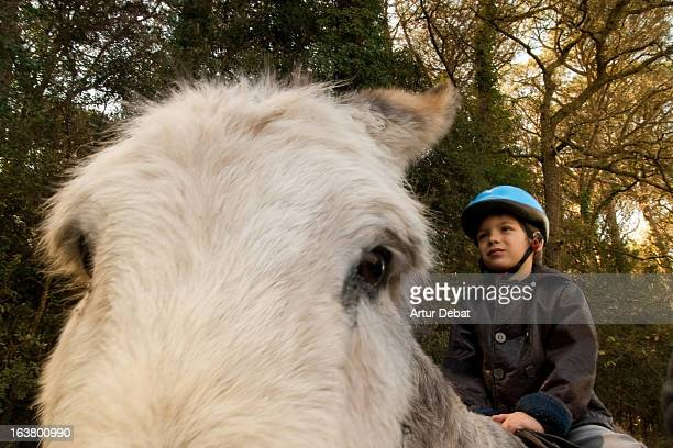 Boy with helmet riding a donkey between woods.