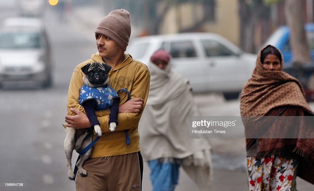 A boy with his pet dog covered with woolens going for the morning walk in cold and foggy morning at around 7:00 AM at Mayur Vihar on January 4, 2013 in New Delhi, India. Delhi experienced the Coldest Morning Temperature of 2.7 Degree Celsius of this Winter Season.