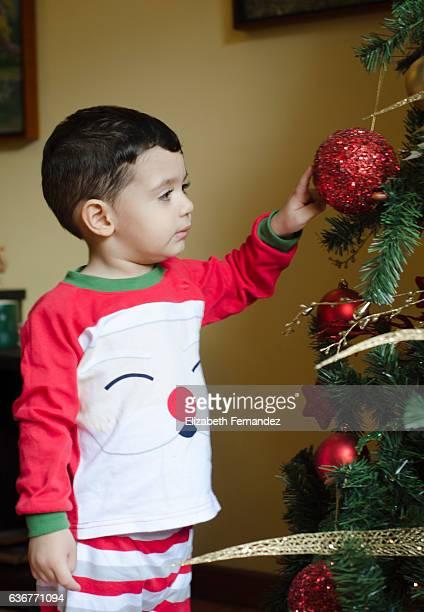 Boy with x-mas tree