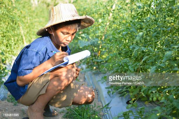 Boy Writing On Notepad By Tomato Plants At Farm