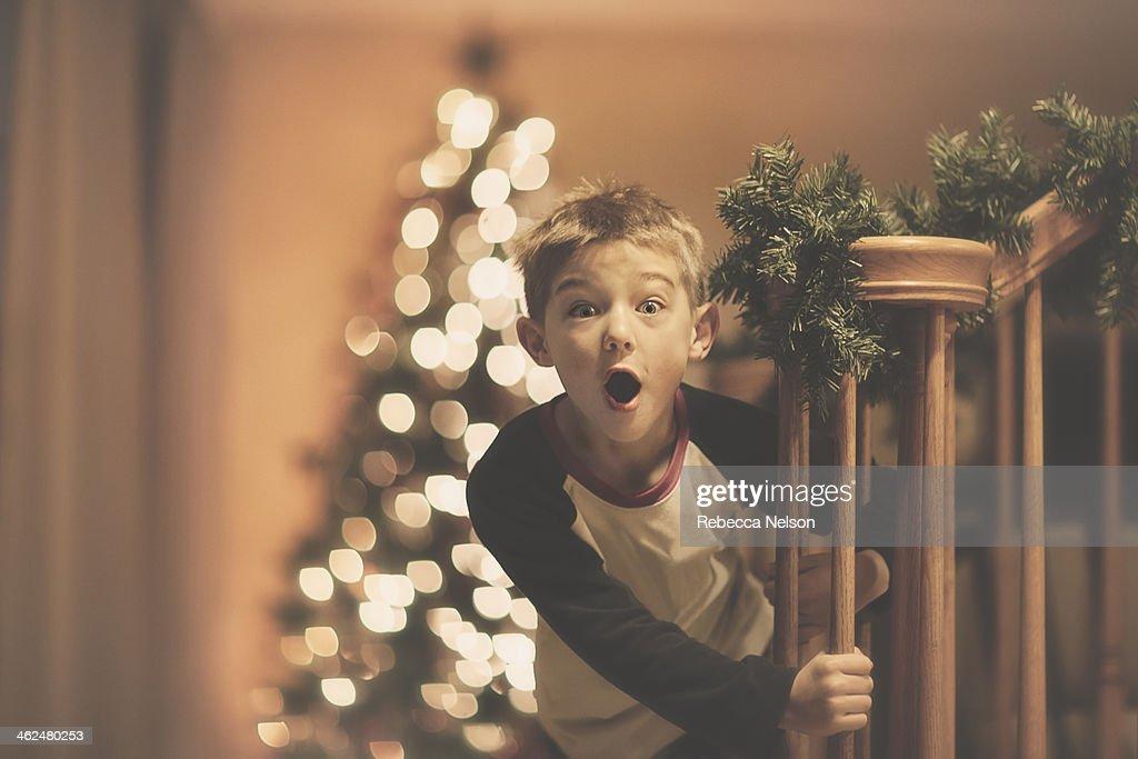 Boy's Christmas Surprise : Stock Photo