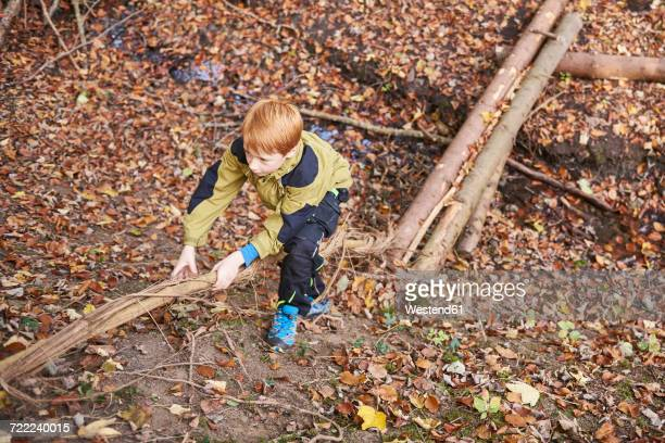 Boys climbing hillside in autumnal forest