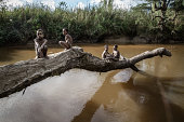 Boys from the Dani tribe sit on a fallen tree over a river at Soroba Village on August 9 2014 in Wamena Papua Indonesia The Dani tribe live a...