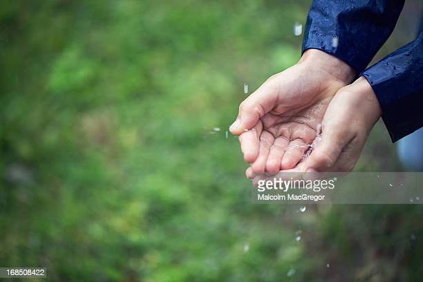 Boys hands catching rain