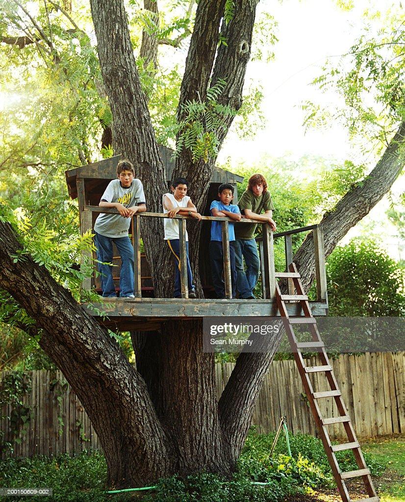 Boys (11-15) in tree house : Stock Photo