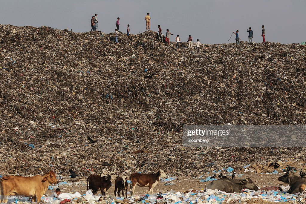 Boys play as cows graze through garbage at the Deonar landfill site in Mumbai, India, on Wednesday, March 11, 2015. Mumbai is running out of space for its waste, and Deonar, Asia's oldest and largest dumpsite, is bursting. Each day, more than 500 trucks line up along a two-lane dirt road in an eastern suburb, waiting to add to a mountain of refuse tall enough to submerge the White House twice over. Photographer: Dhiraj Singh/Bloomberg via Getty Images