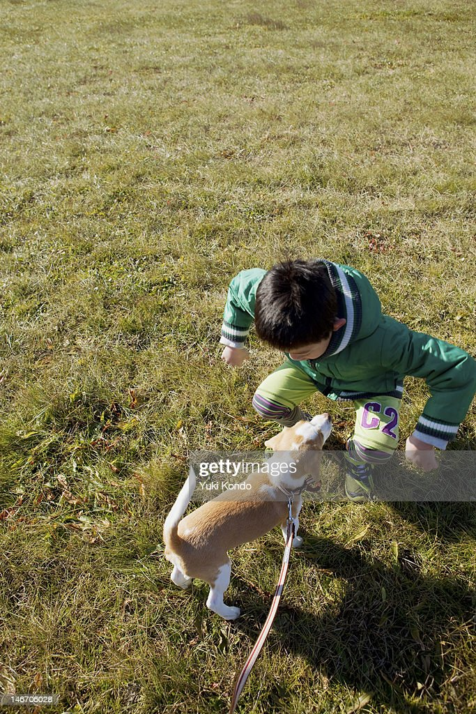 Boys play the dog in the grass green. : Stock Photo