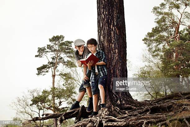 Boys reading book by tree trunk