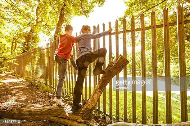 Boys staring into park