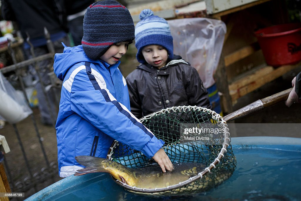 Boys stroke a carp stored in a net on at fishmonger stall on December 21, 2013 in Prague, Czech Republic. In the days before Christmas, fisherman from Southern Bohemia sell their live fish on street corners for use in the traditional Czech Christmas dishes of fried carp, potato salad and fish soup.