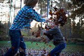 Boys throwing leaves at eachother