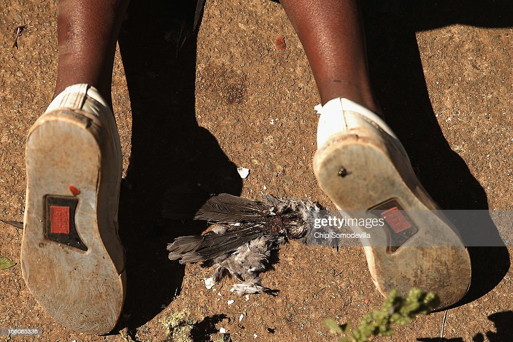 Boys use string, hooks and bits of a pigeon carcas as bait while trying to catch frogs and crabs in the creek running through Thokoza Park April 8, 2013 in Johannesburg, South Africa. Thokoza Park is situated right next to Regina Mundi Catholic Church, a site of resistance during apartheid and place of shelter during the 1976 Soweto Uprising. Former South African President Nelson Mandela returned to his Johannesburg home Saturday after spending nine days in the hospital with pneumonia.