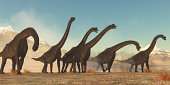 A Brachiosaurus dinosaur herd pass through a dry desert area in the Jurassic Period of North America.