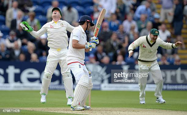 Brad Haddin and Michael Clarke of Australia celebrates dismissing England captain Alastair Cook during day one of the 1st Investec Ashes Test match...