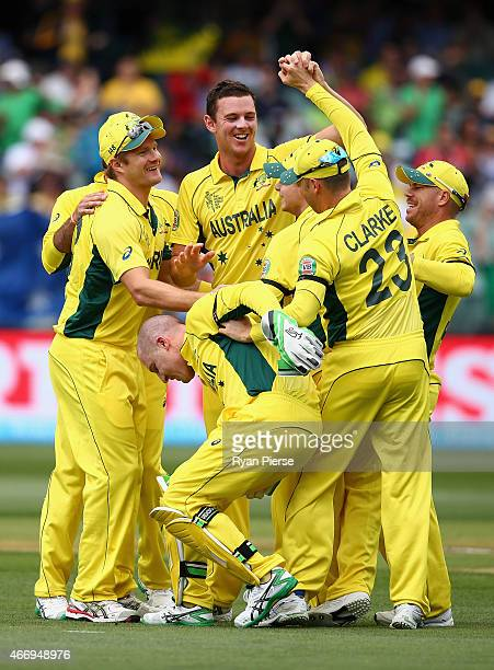 Brad Haddin of Australia reacts after rolling his ankle during the wicket celebration as Josh Hazlewood of Australia claimed the wicket of Ahmed...