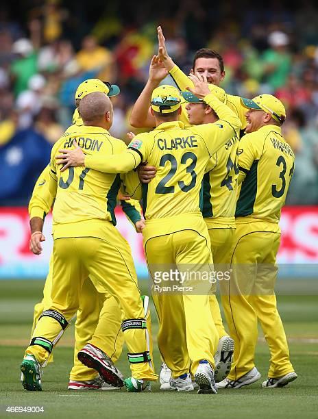 Brad Haddin of Australia rolls his ankle during the wicket celebration as Josh Hazlewood of Australia claimed the wicket of Ahmed Shehzad of Pakistan...