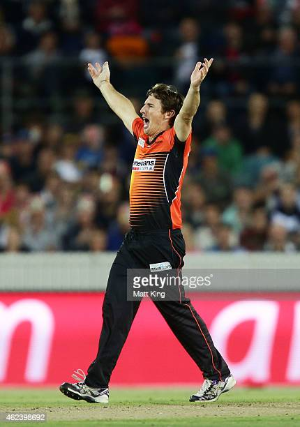 Brad Hogg of the Scorchers celebrates taking the wicket of Jordan Silk of the Sixers during the Big Bash League final match between the Sydney Sixers...