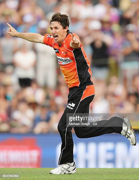 Brad Hogg of the Scorchers celebrates the wicket of Dan Christian of the Hurricanes during the Big Bash League match between the Hobart Hurricanes...