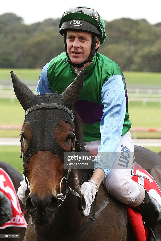 Brad Mclean riding Angelology after winning Race 4, The Australian Steeplechase during Melbourne Racing at Sandown Lakeside on May 28, 2016 in Melbourne, Australia.