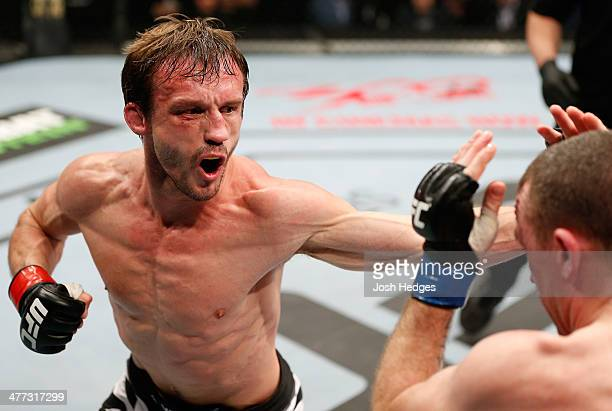 Brad Pickett punches Neil Seery in their flyweight fight during the UFC Fight Night London event at the O2 Arena on March 8 2014 in London England