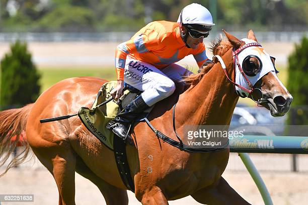 Brad Rawiller riding Burning Front wins Race 4 during Melbourne Racing at Moonee Valley Racecourse on January 21 2017 in Melbourne Australia