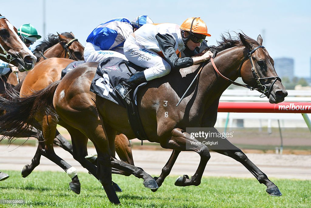Brad Rawiller riding Goldslick is shown enroute to winning the Dover Handicap during Melbourne racing at Flemington Racecourse on January 19, 2013 in Melbourne, Australia.
