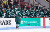 Brad Schierhorn of the Dartmouth College Big Green celebrates his goal with his teammates during NCAA hockey action against the Boston University...