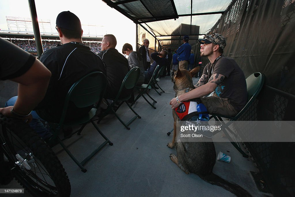 Brad Schwarz, with his service dog Panzer, attends a Chicago Cubs game with a group of veterans from the Wounded Warrior Project at Wrigley Field on June 14, 2012 in Chicago, Illinois. Schwarz uses Panzer to help him cope with post-traumatic stress disorder (PTSD) issues related to his 2008 tour in Iraq. In addition to suffering from PTSD Schwarz has memory loss related to Traumatic Brain Injury (TBI) and he must walk with a cane because of vertebrae and nerve damage in his back and legs. Ten days before he was scheduled to rotate home from a 15-month deployment in Iraq, his second, the Humvee in which he was riding was struck by an Improvised Explosive Device (IED). Of the 5 soldiers riding in the vehicle, which caught fire after the explosion, Schwarz was the only one to survive.