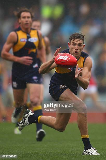 Brad Sheppard of the Eagles marks the ball during the round 18 AFL match between the West Coast Eagles and the Melbourne Demons at Domain Stadium on...