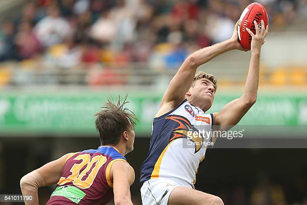 Brad Sheppard of the Eagles takes a mark during the round 13 AFL match between the Brisbane Lions and the West Coast Eagles at The Gabba on June 18...