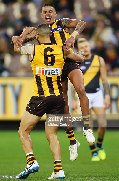 Bradley Hill of the Hawks juimps on Josh Gibson of the Hawks who kicked a goal during the round 18 AFL match between the Hawthorn Hawks and the...