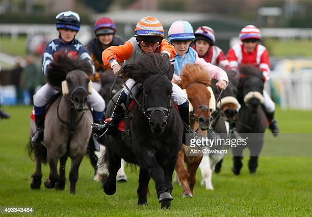 Bradley Kent riding Bugsey win The Moorcroft Racehorse Welfare Centre Shetland Pony Gold Cup at Plumpton racecourse on October 19 2015 in Plumpton...