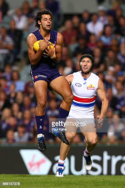 Brady Grey of the Dockers marks the ball during the round three AFL match between the Fremantle Dockers and the Western Bulldogs at Domain Stadium on...