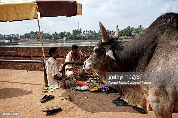 Brahmin performing ritual ceremony by Bindusagar lake