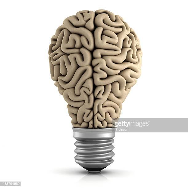 Cerveau Ampoule