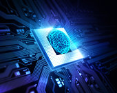 Processors with a circuit brain