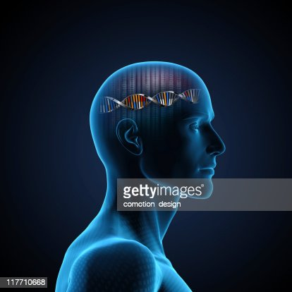 Brain DNA