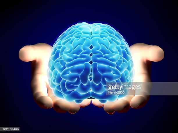 Brain in hands - with clipping path