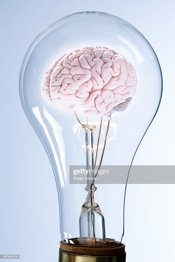 A brain inside a lightbulb