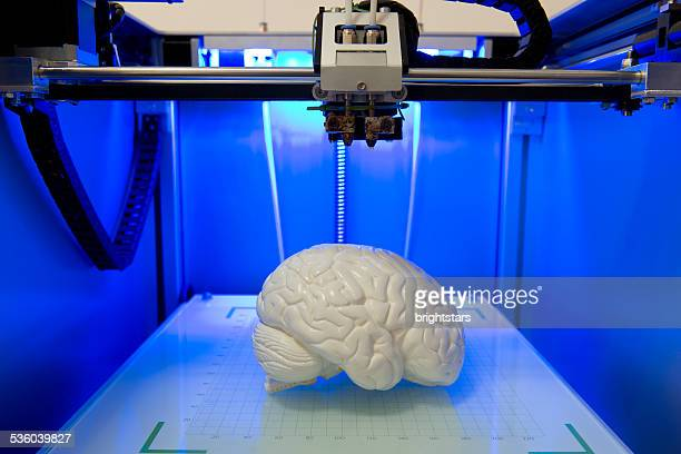 Brain model in a 3D printer