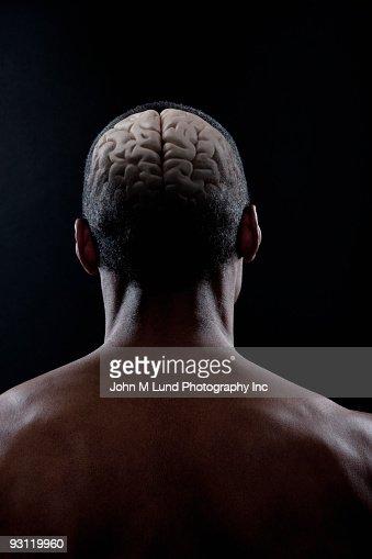 Brain of mixed race man : Stock Photo