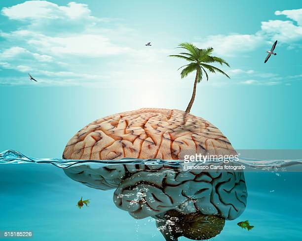 Brain on holiday