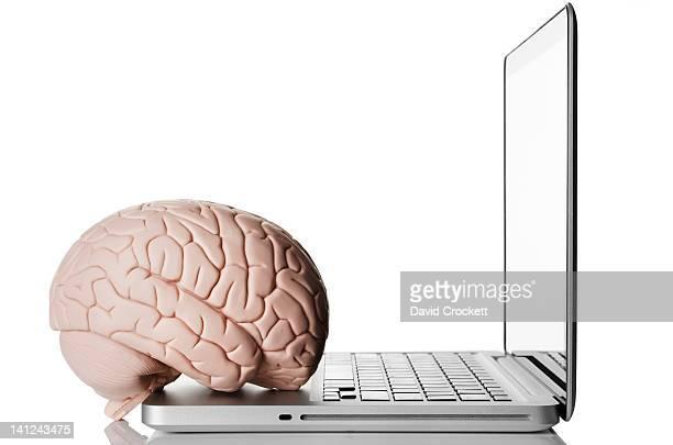 Brain on laptop
