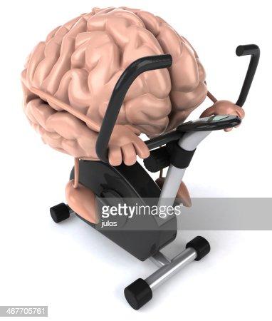Brain : Stock Photo
